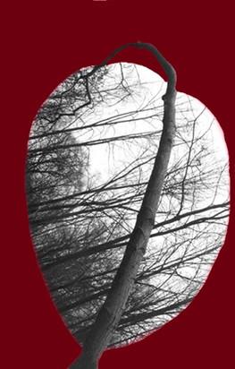 Cœur traversé 2 Photmontage peint argentique 2