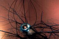 150 nids bleus accrochés dans les branchages reliant les éléments entre eux