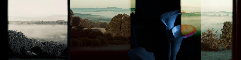 Par la fenêtre, 2019