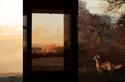 Margot à la fenêtre, 2019