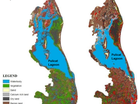 2014-2019 Change in Land Use of Pulicat Lagoon