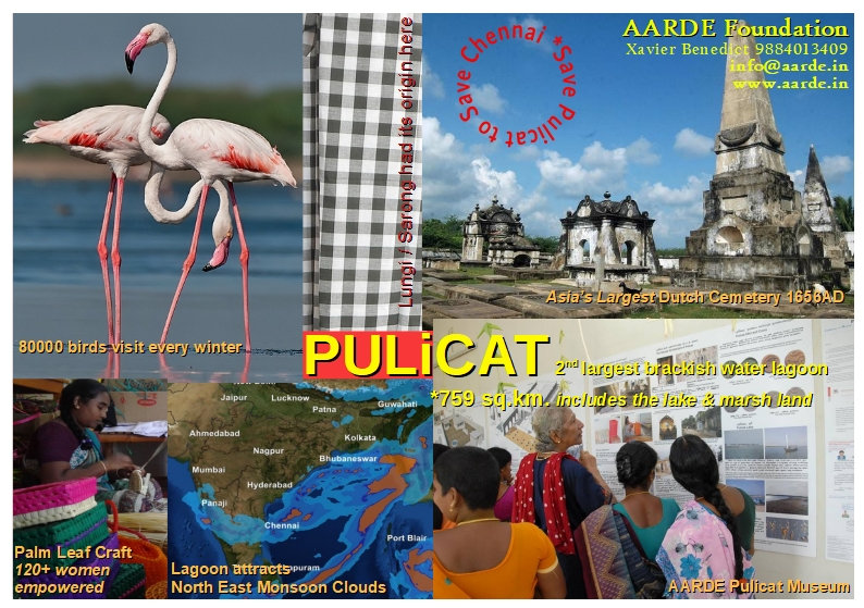 Save Pulicat to Save Chennai
