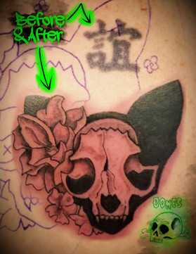 Skull Cat Cover Up_edited_edited.jpg