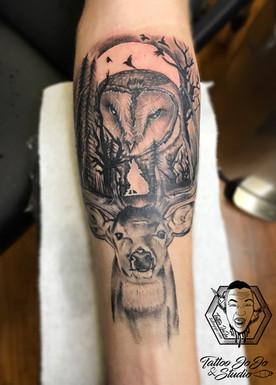 owl, wolf, trees.jpg