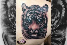 badass tiger.jpg