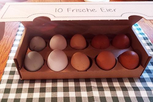10 Hühnereier von glücklichen Hühnern