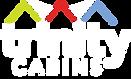 Trinity Cabins Logo Web.png