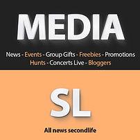 Logo-Mediasl.jpg