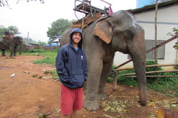 Max And The Elephant