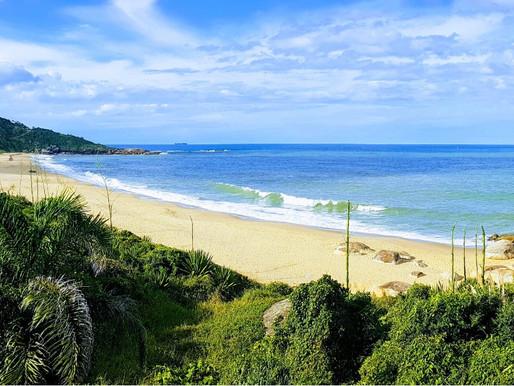 Engajamento pela Praia de Taquarinhas como parque natural
