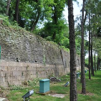 Suzhou_edited.jpg