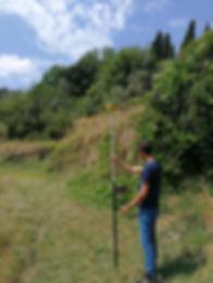 Volterra.jpg