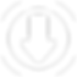 DL logo white.png