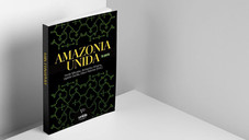 """Amazonia Unida - primeros publicaciónes de los proyectos """"Unidos para el desarrollo de la Amazonía"""""""