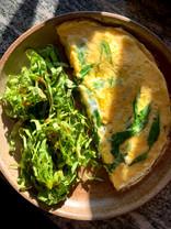 L'omelette aux verdures du verger, chicorée.