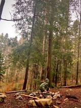 Pour Beltaine, une virée en forêt sous la pluie!