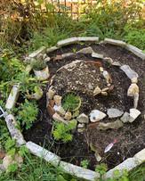 Construction en cours de la spirale aromatique collective!