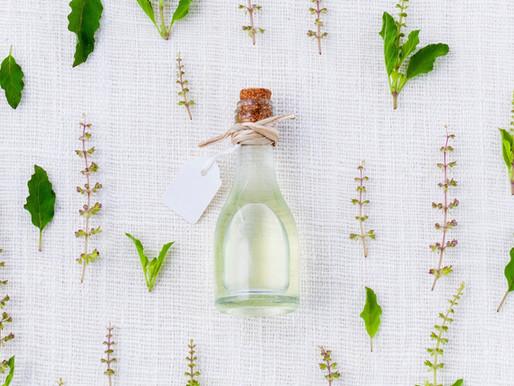 Se soigner au naturel: plantes médicinales à avoir chez soi