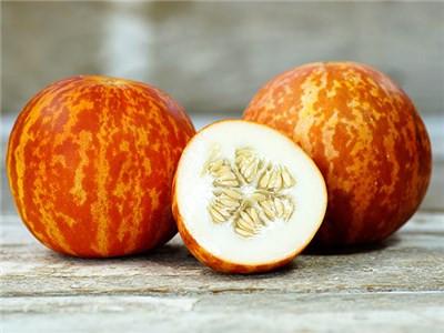 Melon-Tigger-DSC07125.jpg