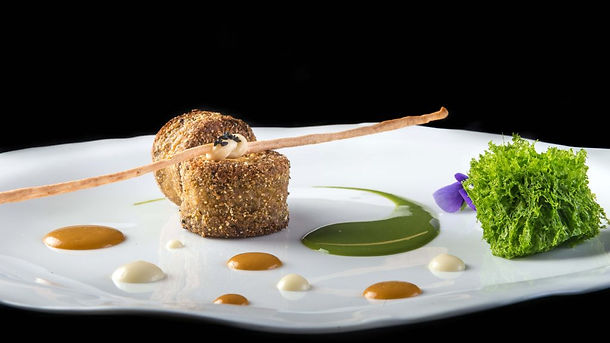 Crocchette di Lumache su spremuta di Erbe all'Aceto di Champagne, Gocce di Pomodoro e salsa all'Aglio