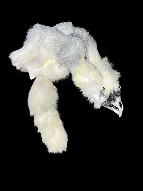 Marble Fox