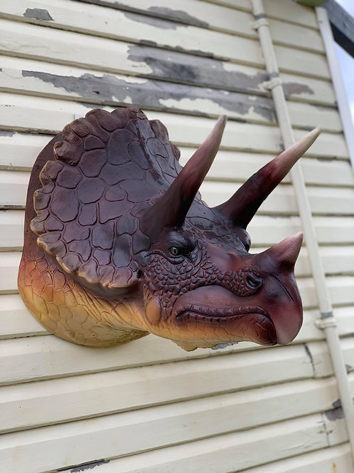 Faux Taxidermy Triceratops Wall Mount