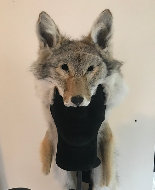 Coyote Hollow Headdress
