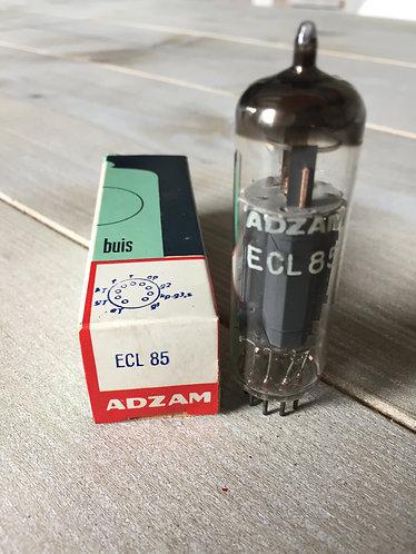ECL 85 Adzam