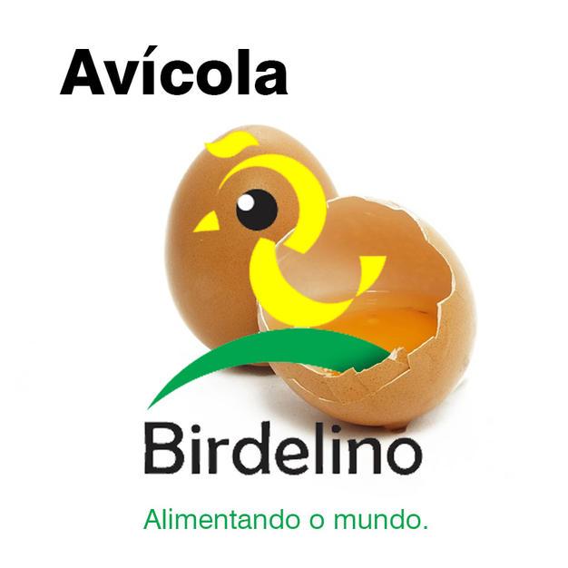 Alimentando o mundo   Birdelino
