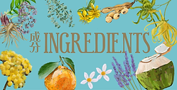 ingredients 2.png