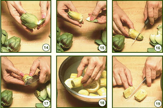 artichoke how4.jpg