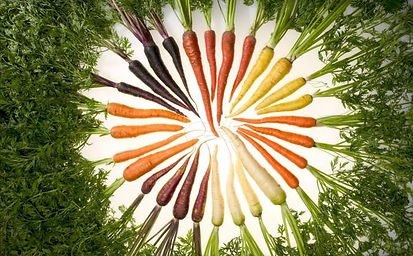 carrots color.jpg