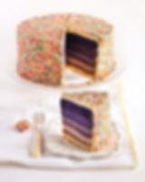 cake color and sprinkle.jpg