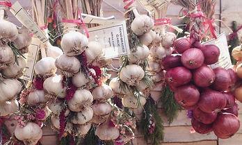 type of onions.jpg