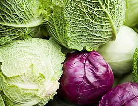 types of cabbage.webp