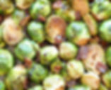 brussels sprout.jpeg