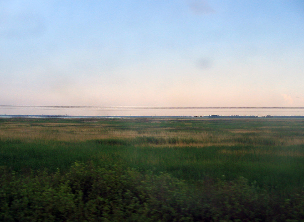 transsib4 Barabinsk_steppe.jpg