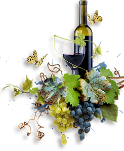 vin.png