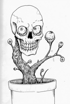 skull plant.png