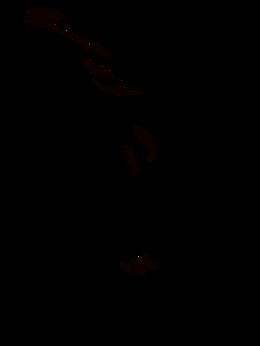 dragon pattern 2.png