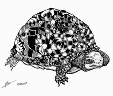 turtle pattern original.png