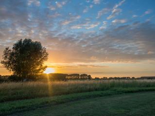 Drehorgel und Bauernhof-Camping