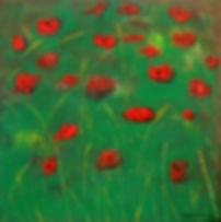 mohnwiese 100 x 100 grün, rot, gelb