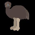 EMU2.png