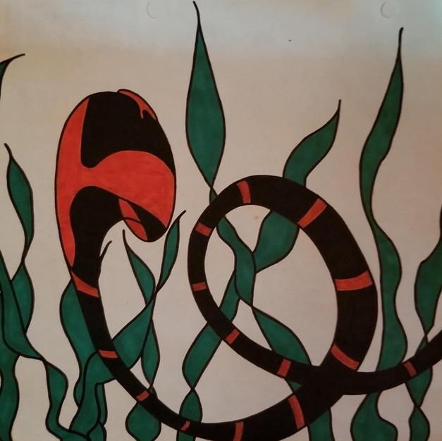 Snake in the grass..jpg