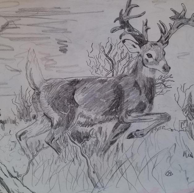 Grand Buck.jpg