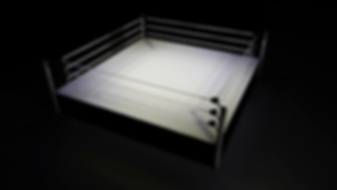 boxing ring.png