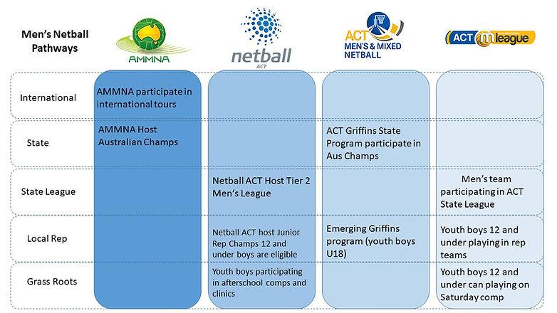 ACT Mens pathways flow chart.jpg
