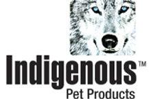 Indigenous Reno