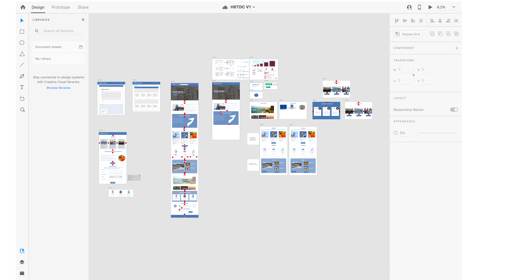 Adobe XD work for Hayle Barise